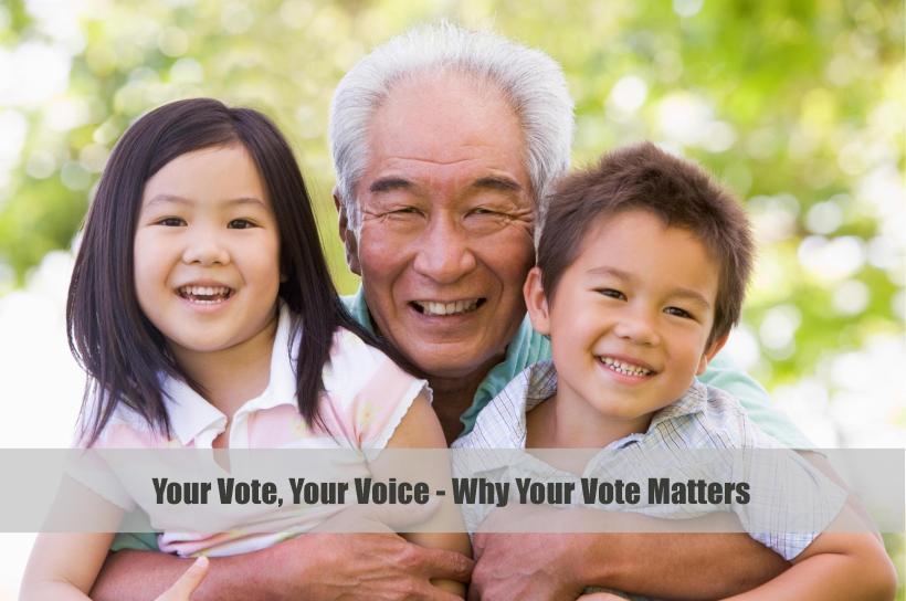Vote blog banner