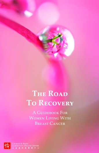 cover of The Road to Recovery
